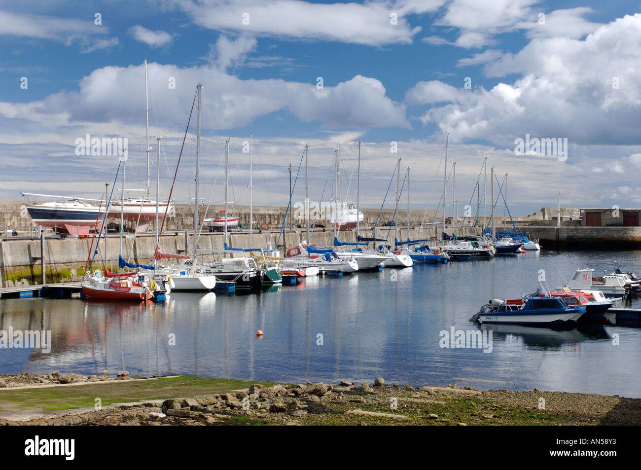 Lossiemouth harbour shared by both fishing and pleasure boats. Morayshire. Scotland.  XPL 3221-321 - Stock Image