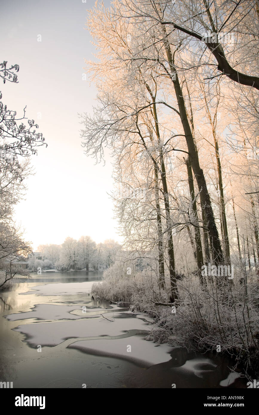 Vista along a partly frozen ditch bordered by frosted trees to a small lake, Alblasserdam, South-Holland, Netherlands - Stock Image