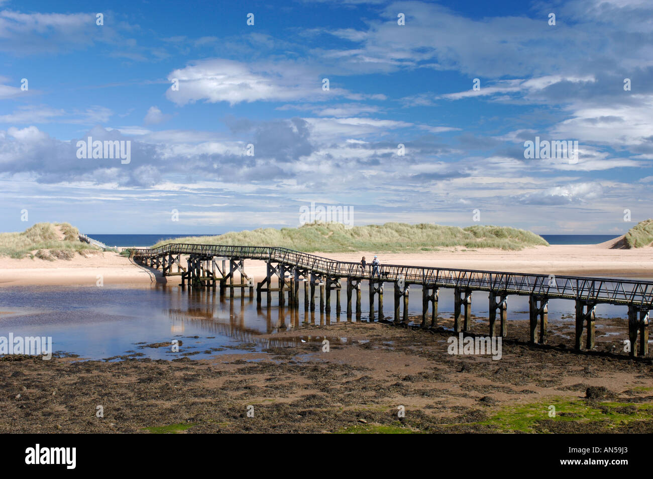 Lossiemouth footbridge to the sandy beach and dune system Morayshire, Scotland.  XPL 3227-321 - Stock Image