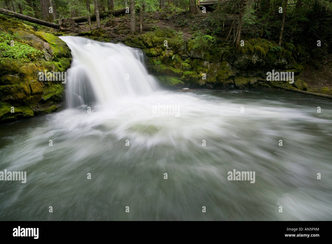 Whitehorse falls - Stock Image