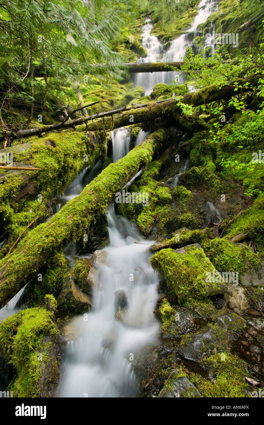 Upper Proxy Falls detail - Stock Image