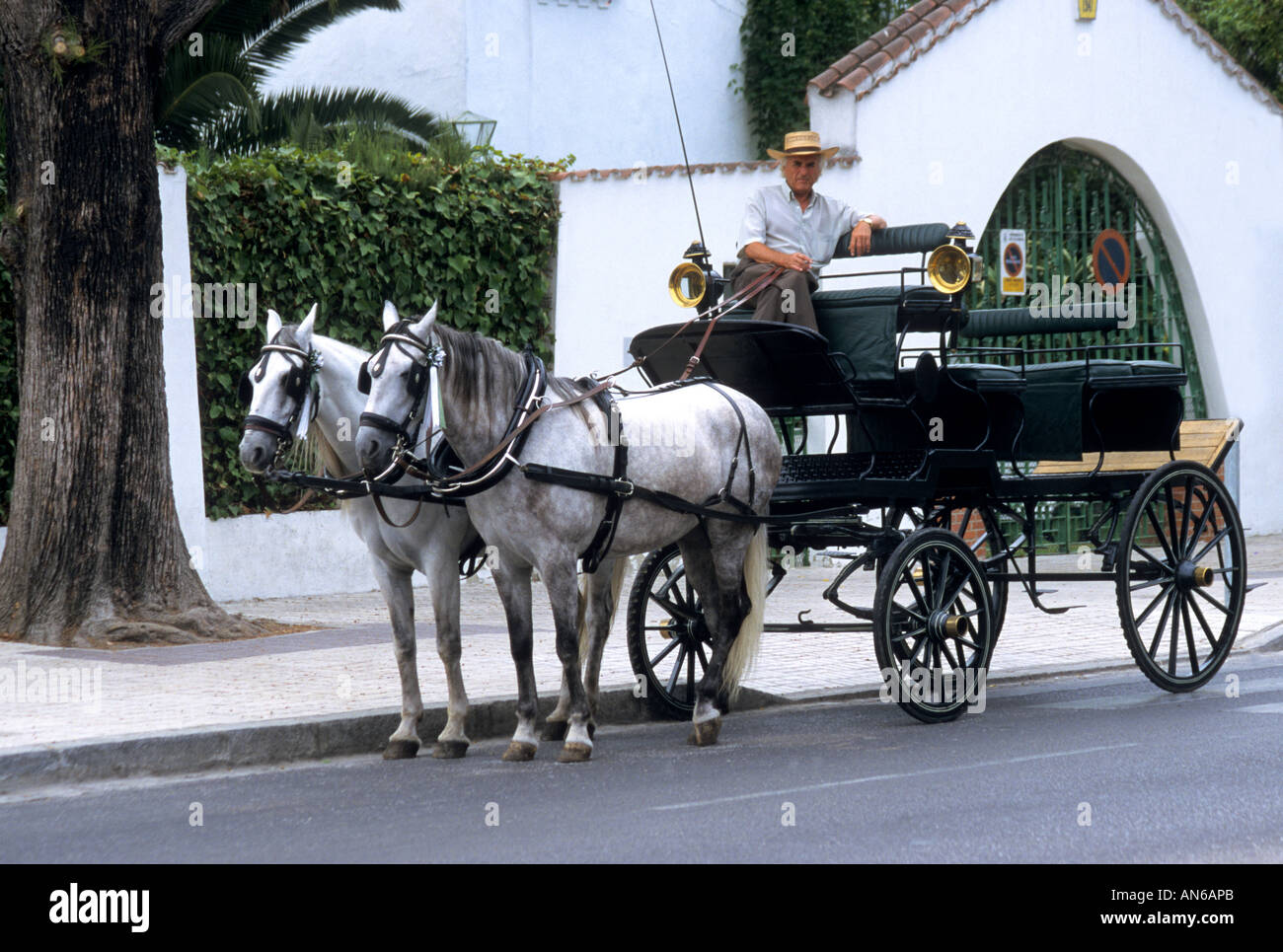 Carriage and horses waiting for tourists at Jerez de la Frontera Spain - Stock Image