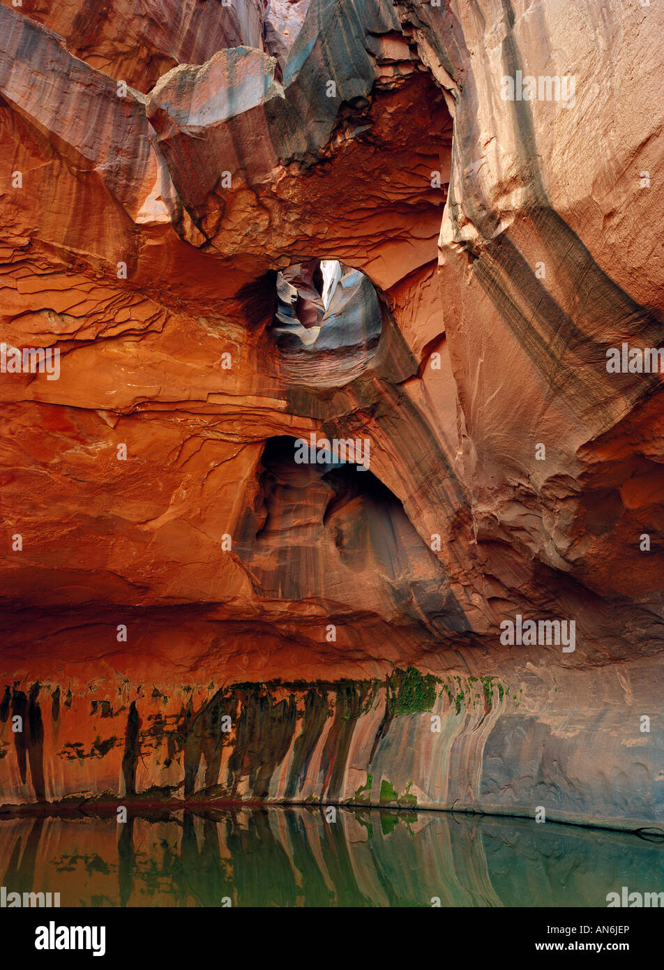 Golden Cathedral in the Neon canyon Glen Canyon National Recreation Area USA Utah - Stock Image