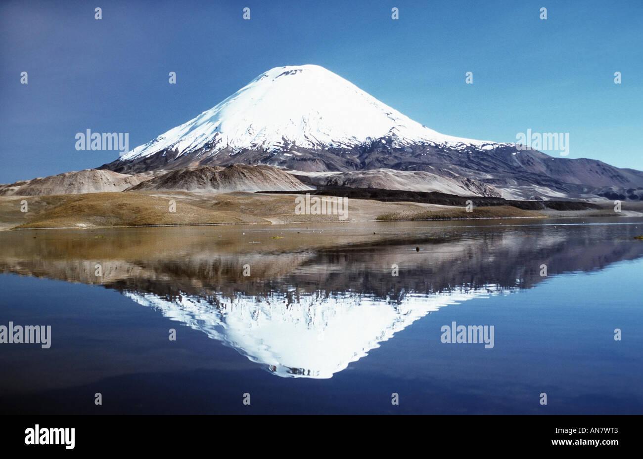 Volcano Parinacota, with reflexion mirror in Lago Chungara, Chile, Altiplano - Stock Image