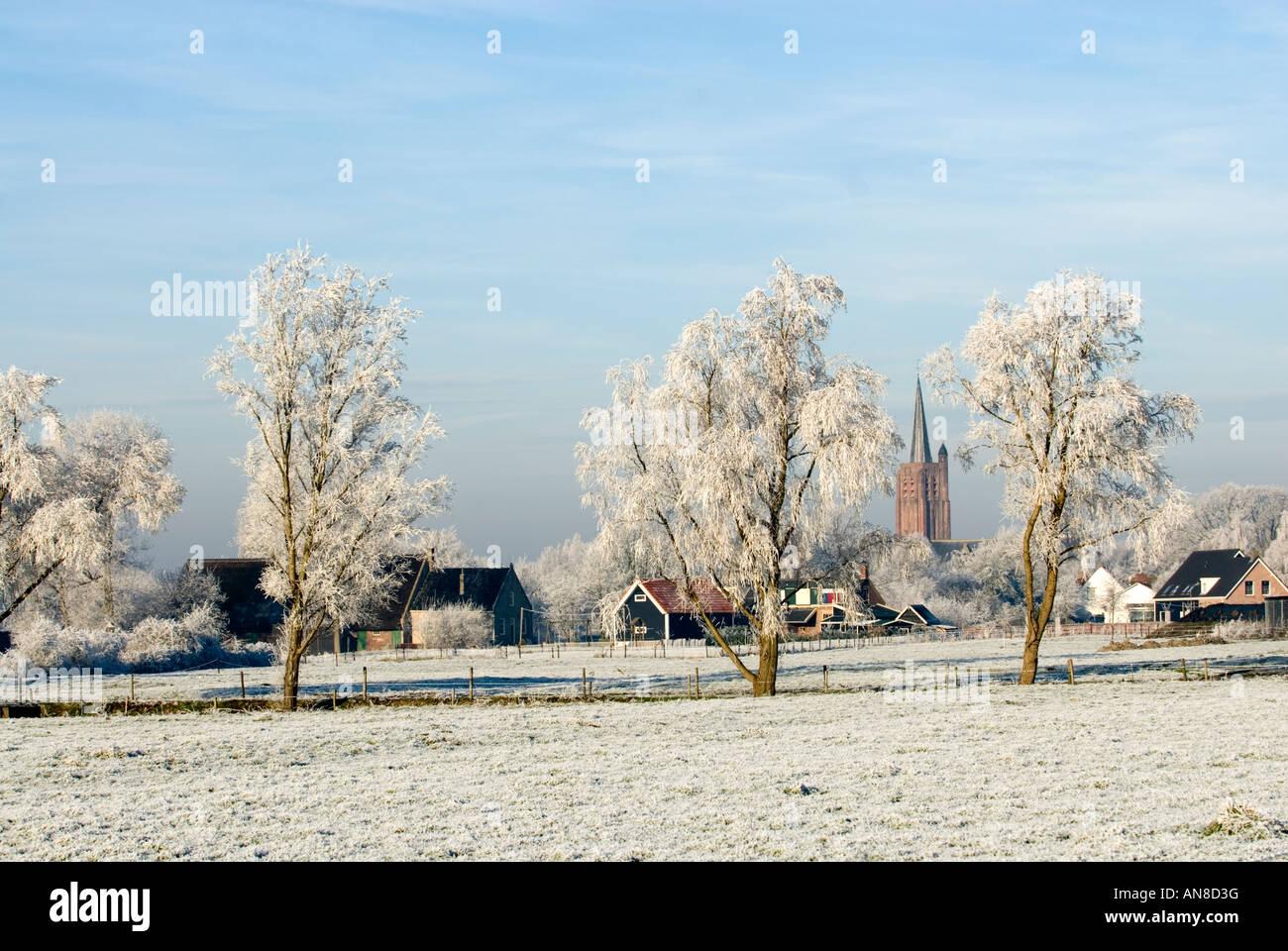 Winter landscape with rimed trees, Village Nisse, Zeeland province, Holland - Stock Image
