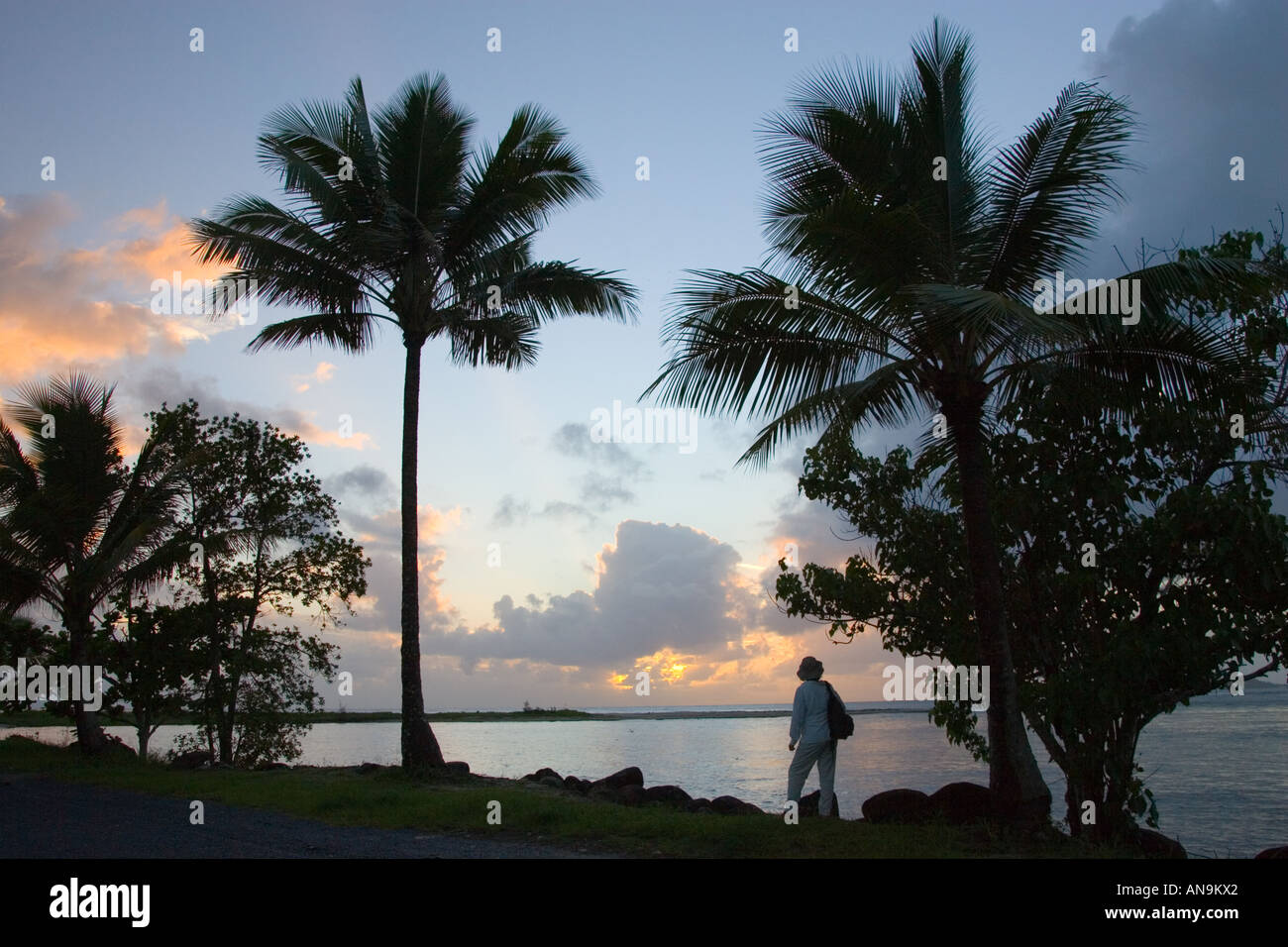 Traveller looks out over the mouth of the Mossman River at Newell Beach Daintree Australia - Stock Image