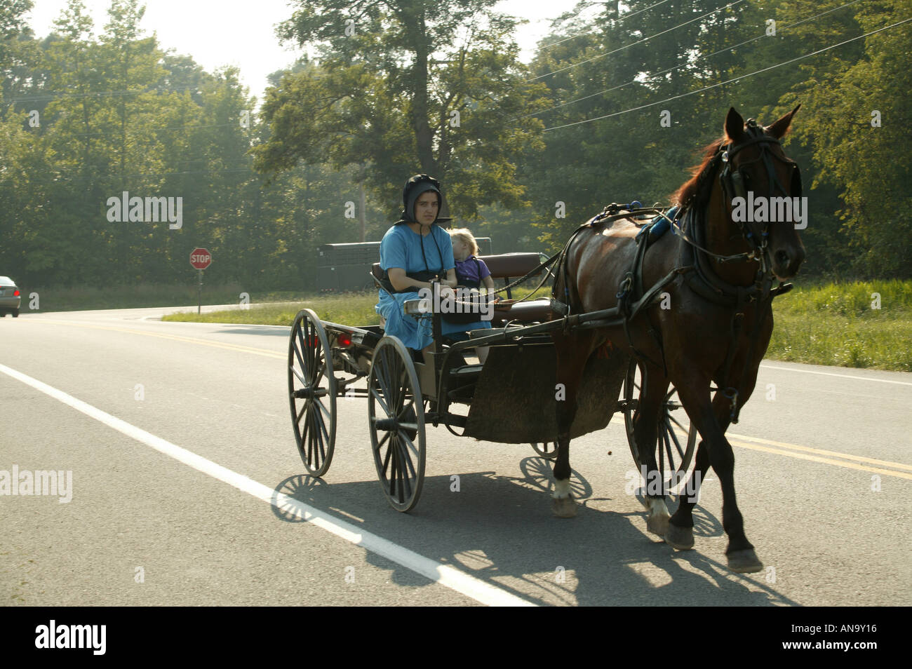 amish people travelling by horse and cart in maryland usa - Stock Image