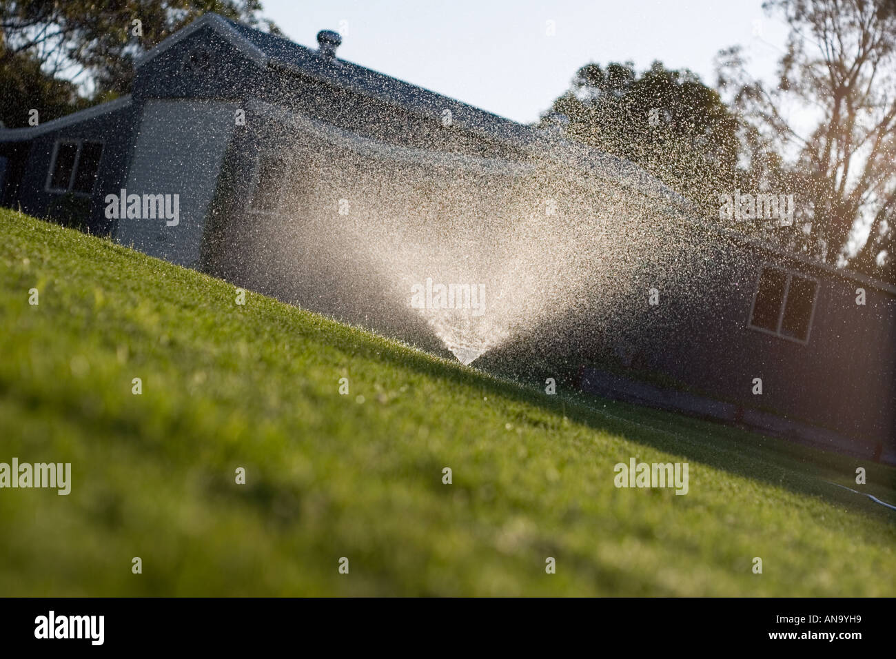 Sprinkler on green lawn, barn and sky in background. Shot low and at an angle very summer, location shot Victoria Australia - Stock Image