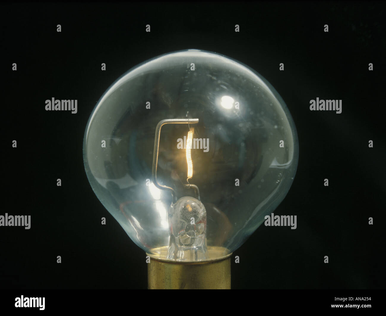 12 volt tungsten filament lamp - Stock Image