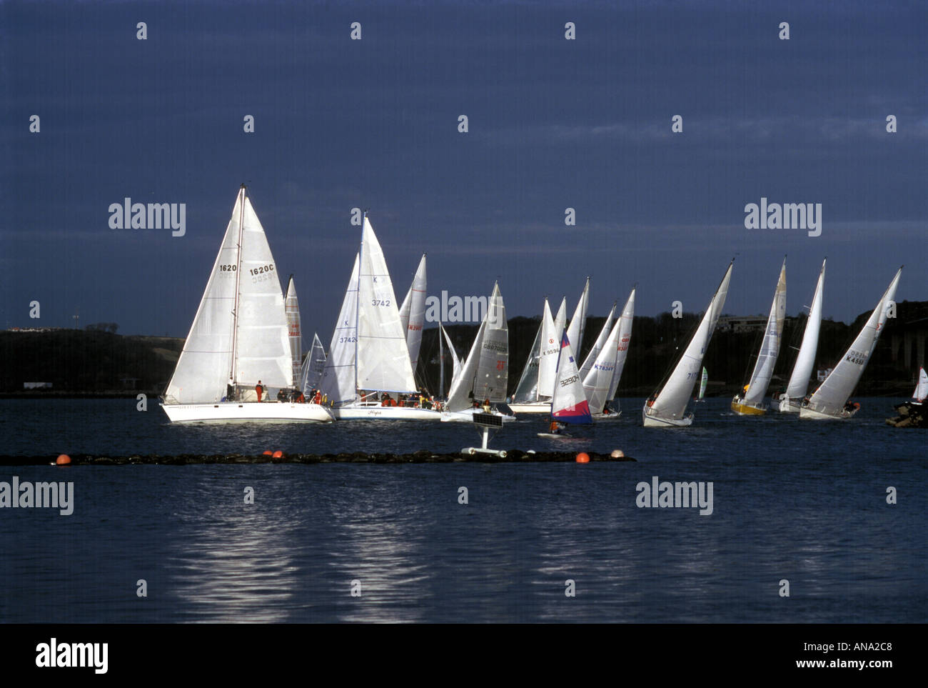 yachts sailing in the Firth of Forth Scotland - Stock Image