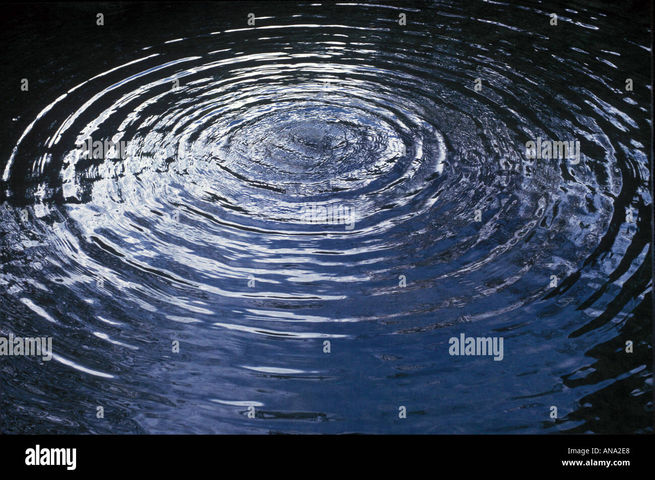 circular ripples in a pond - Stock Image