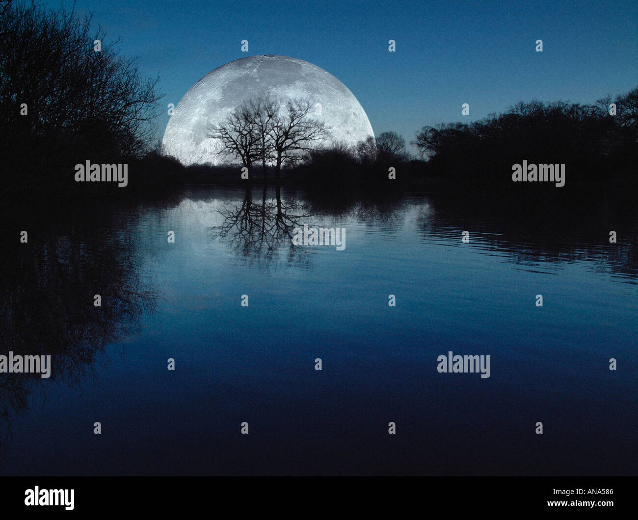 Moonrise over lake with silhouetted trees - Stock Image