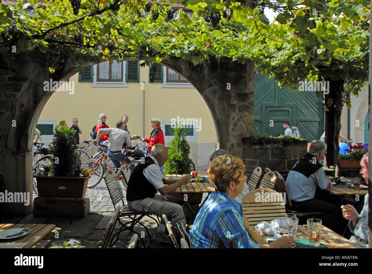 Forst, Wine route day, streets closed for cars, Germany, Rhineland-Palatinate, Deutsche Weinstrasse - Stock Image