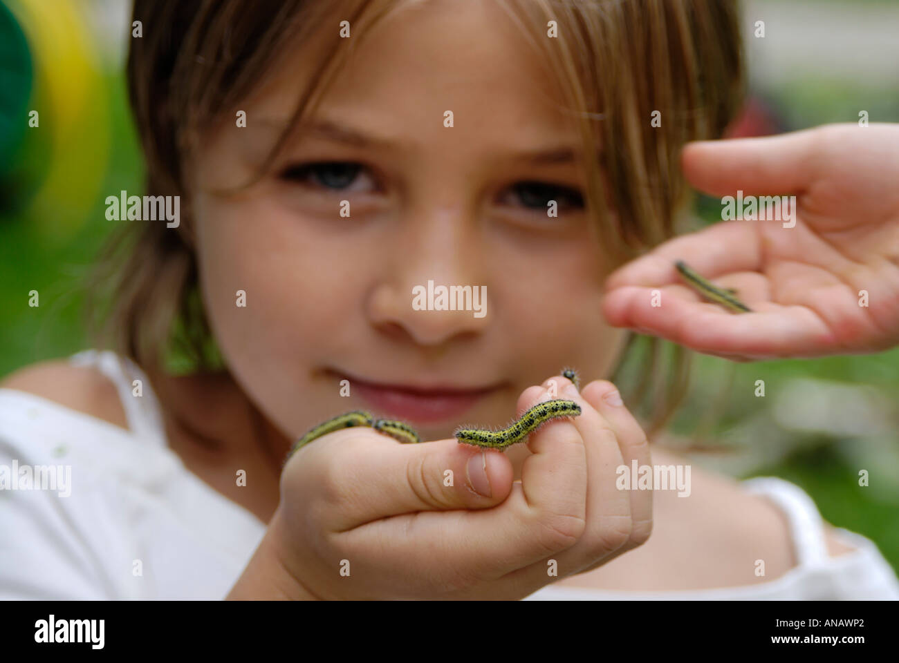 Child with a caterpillar exploring the nature nature games - Stock Image