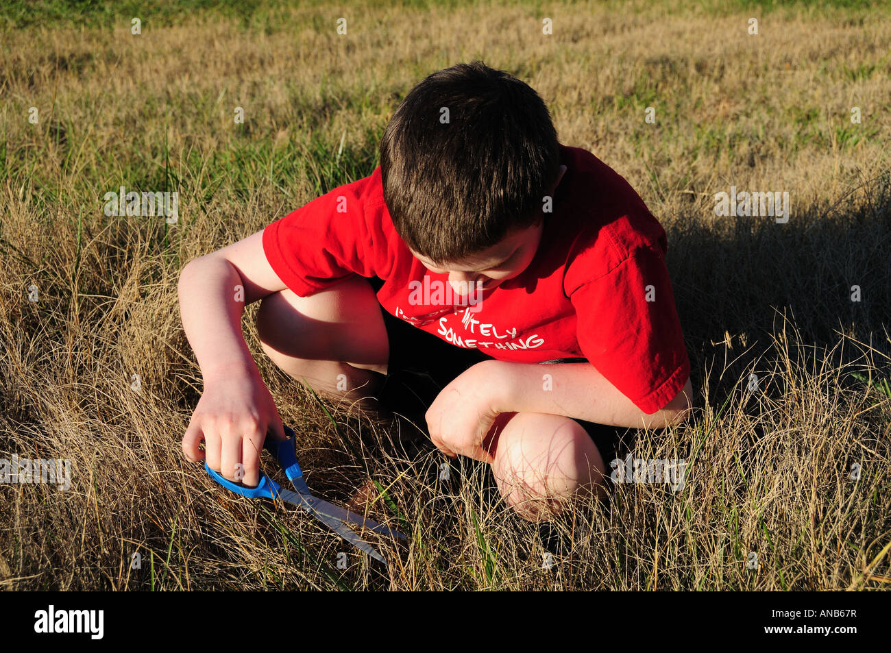 A young boy cuts the grass the slow way one blade at a time. Symbolizes the concept of hard detail at work or a Stock Photo