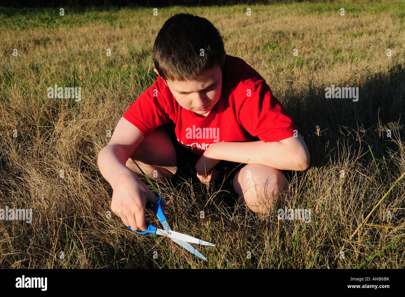 A young boy cuts the grass the slow way one blade at a time. Symbolizes the concept of hard detail at work or a - Stock Image