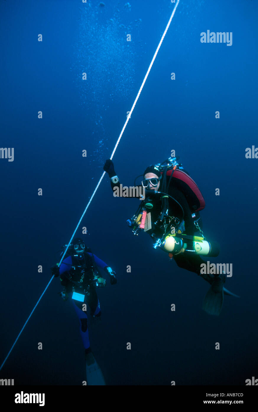 North Carolina off Morehead City divers hanging on line to wreck of Panam - Stock Image