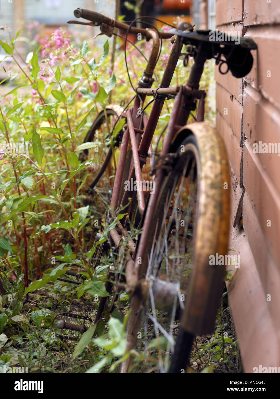 Rusty Bicycle - Stock Image
