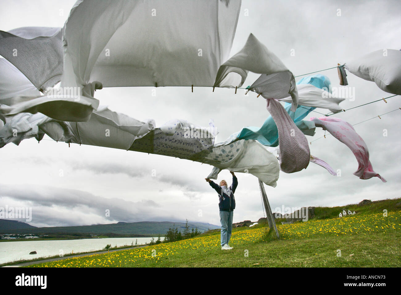 Woman Hanging Laundry in the Wind on the Clothes Line Egilsstadir Iceland - Stock Image