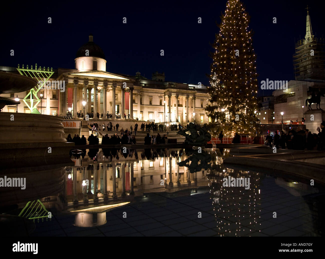 Christmas Tree in Trafalgar Square London annual gift from Norway to ...
