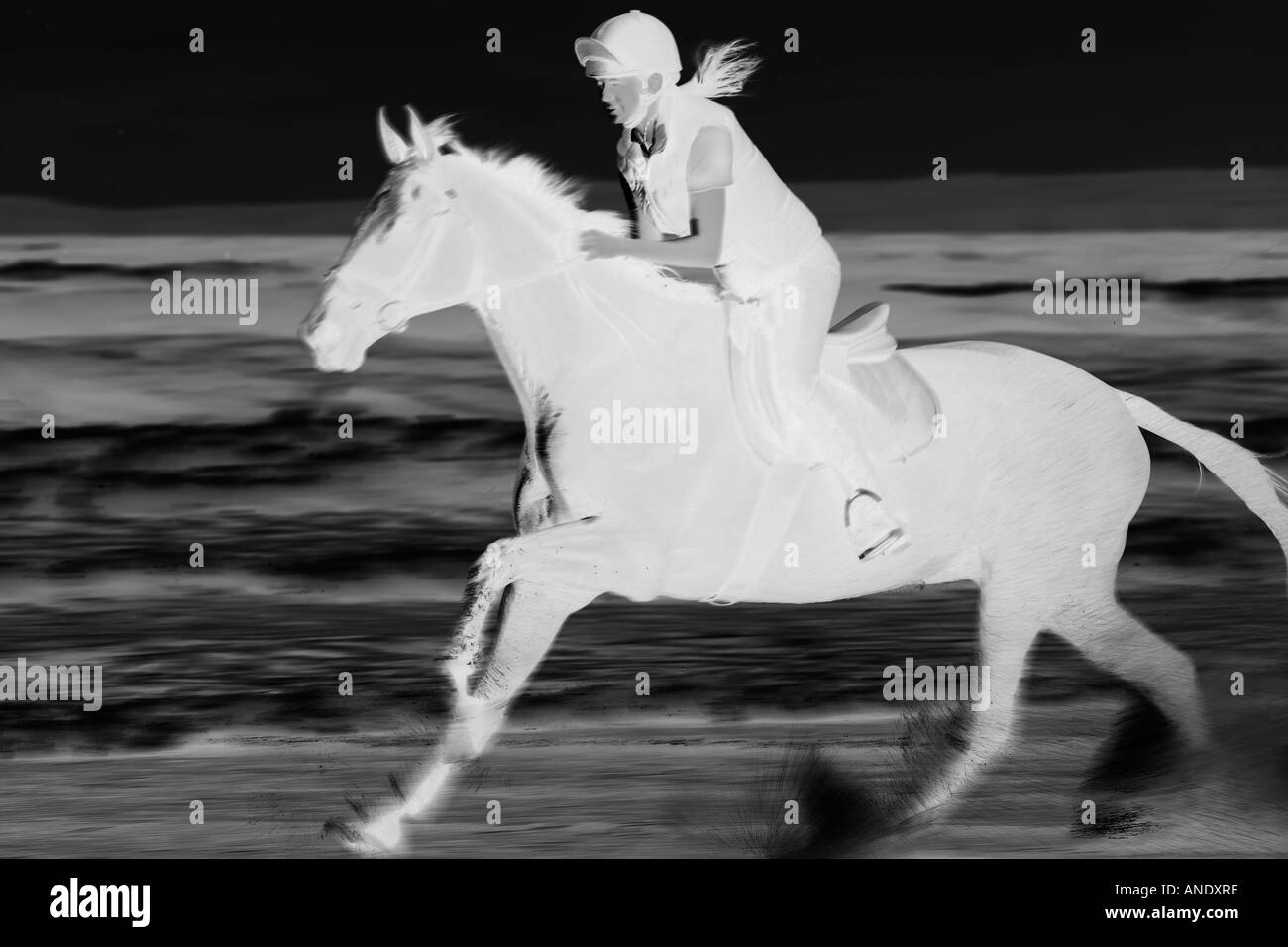 Woman rides horse at a gallop through the waves on Broad Haven Beach Wales United Kingdom - Stock Image