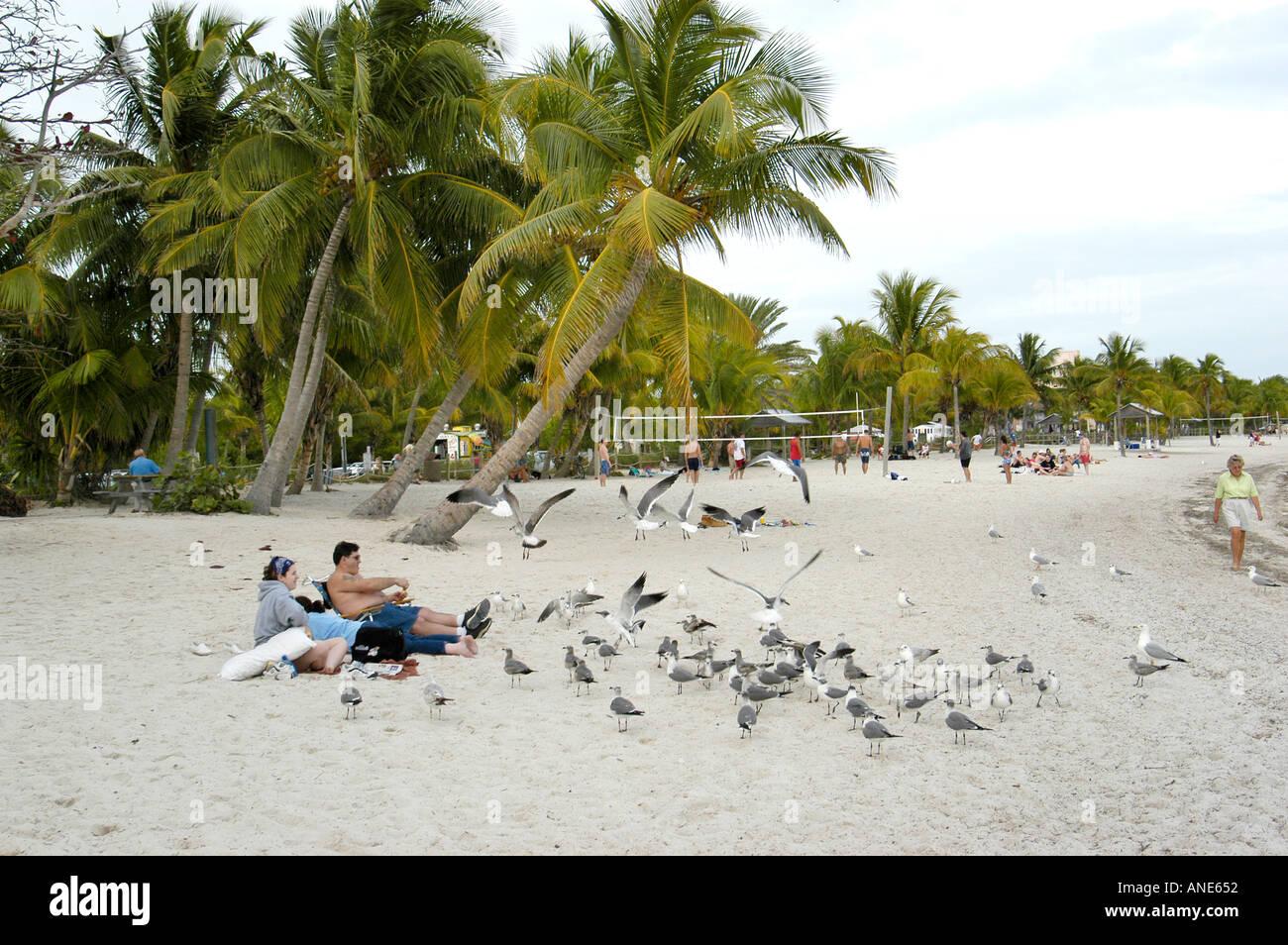 Key West Florida FL - Stock Image