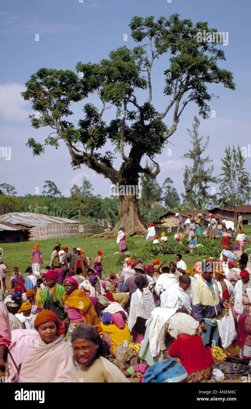 Colourful village market near the big tree Chencha above Arba Minch northern Great Rift Valley southern Ethiopia Stock Photo