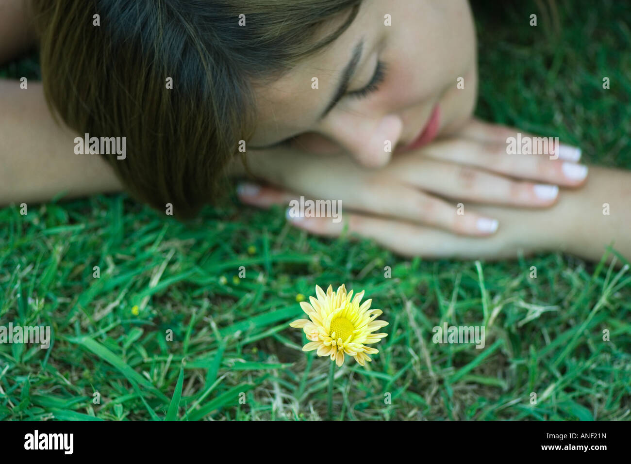 Woman lying on grass next to single yellow flower - Stock Image