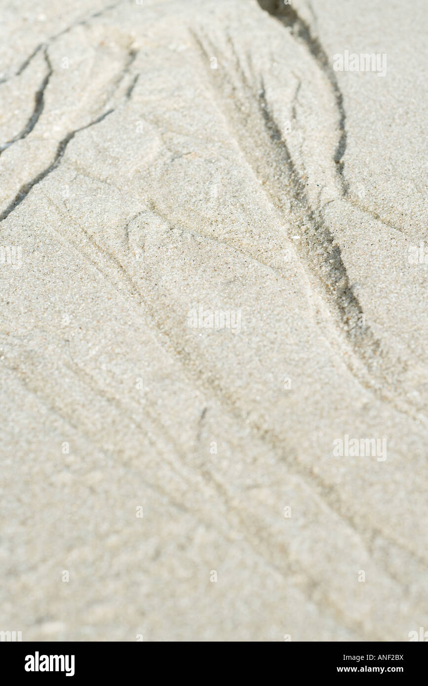 Sand surface - Stock Image