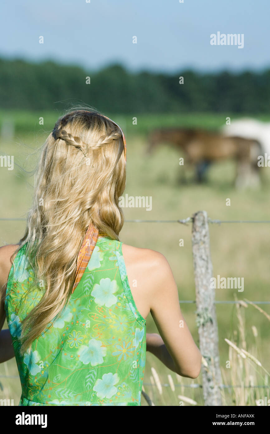 Young woman standing by fence in rural field, rear view - Stock Image