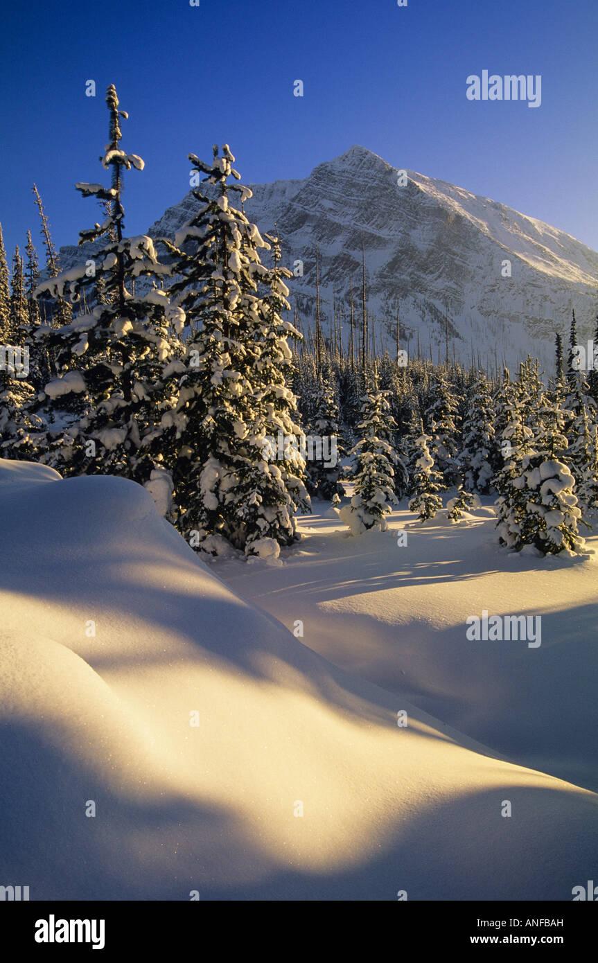 Continental Divide, Banff National Park, Alberta, Canada. - Stock Image