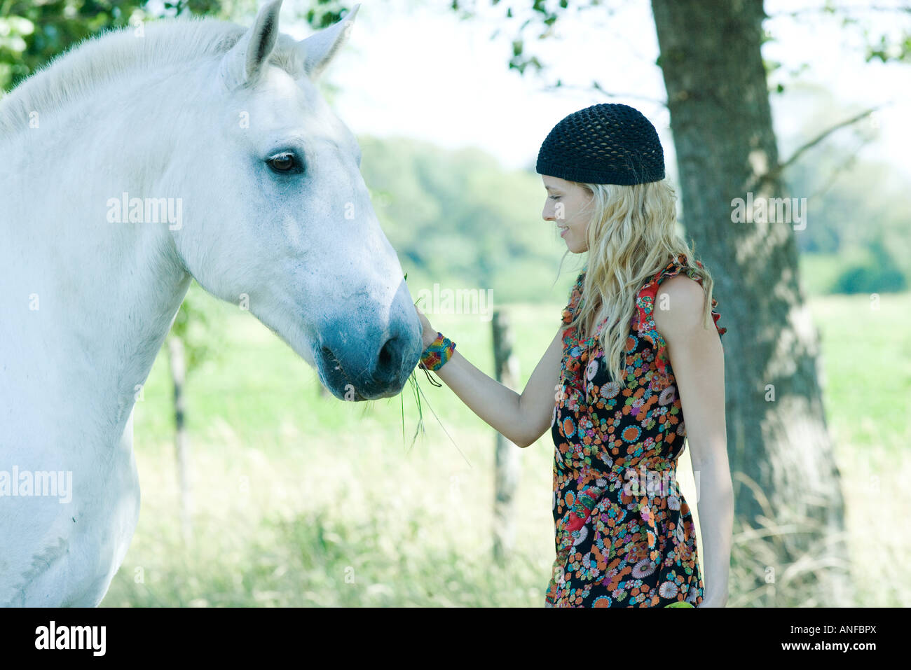 Young woman touching horse, side view - Stock Image