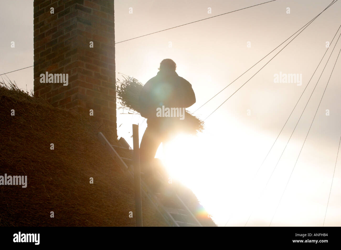 Thatcher roofing in the evening sunlight - Stock Image