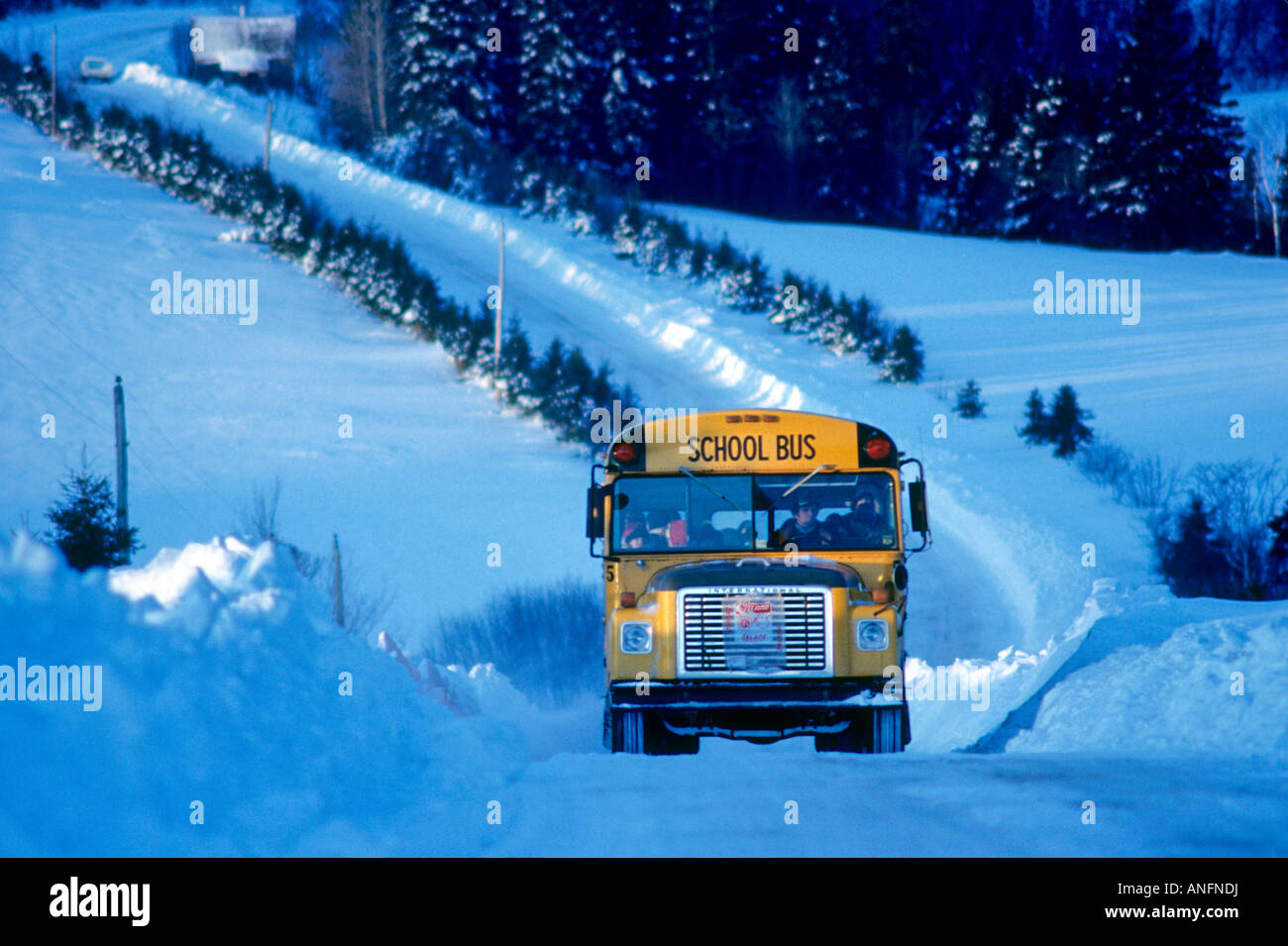 School Bus in Riverdale, Prince Edward Island, Canada. - Stock Image