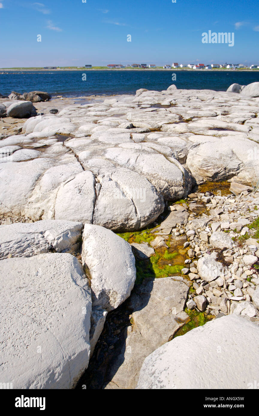 Thrombolites (the earliest forms of primitive life on earth) in Flower's Cove along Highway 430 on the Great - Stock Image