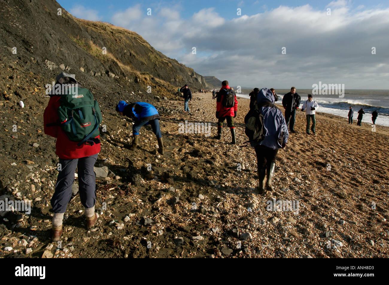 UK Dorset Jurassic Coast Charmouth fossil hunters on beach