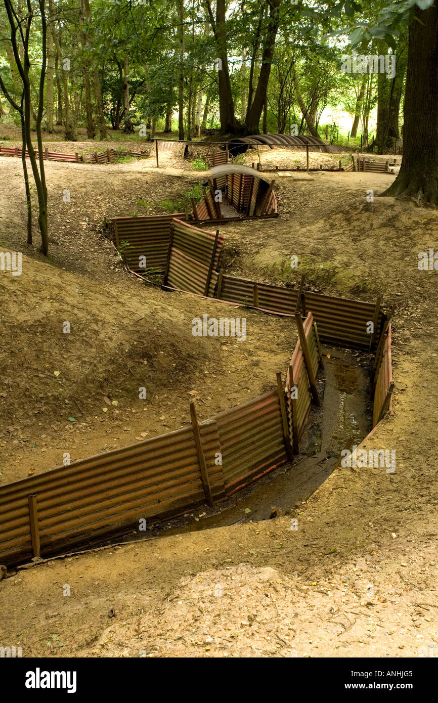 Preserved WW1 shell holes and trenches at Sanctuary Wood near Ypres Belgium - Stock Image