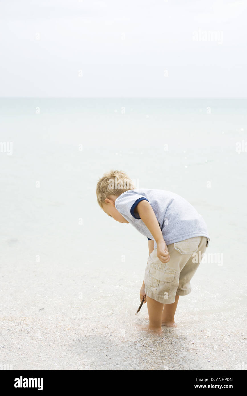 Young boy standing ankle deep in water at the beach, bending over, looking down - Stock Image