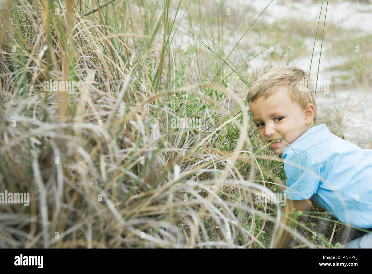 Young boy crouching in tall grass, looking away - Stock Image