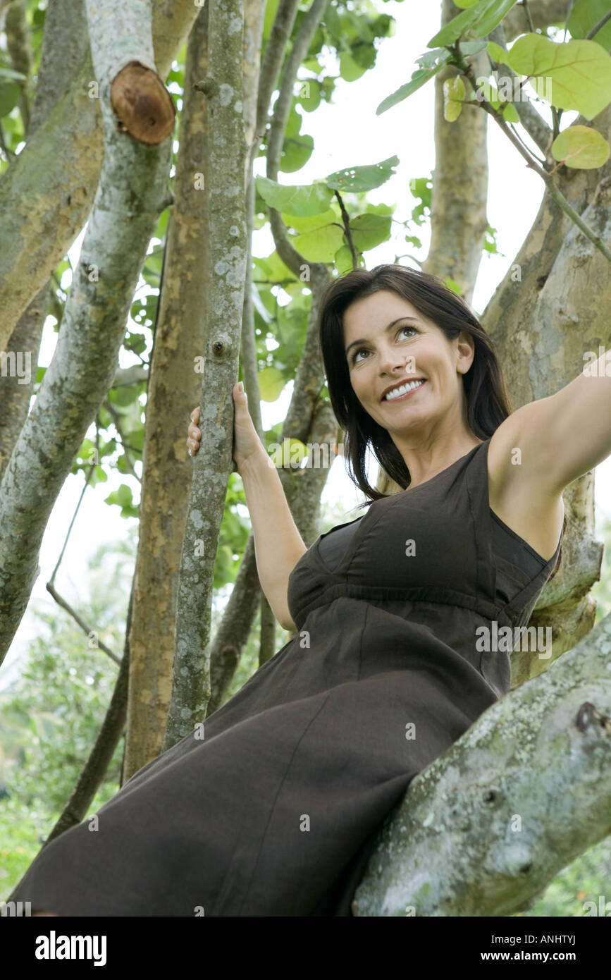 Woman sitting in tree, smiling, low angle view - Stock Image