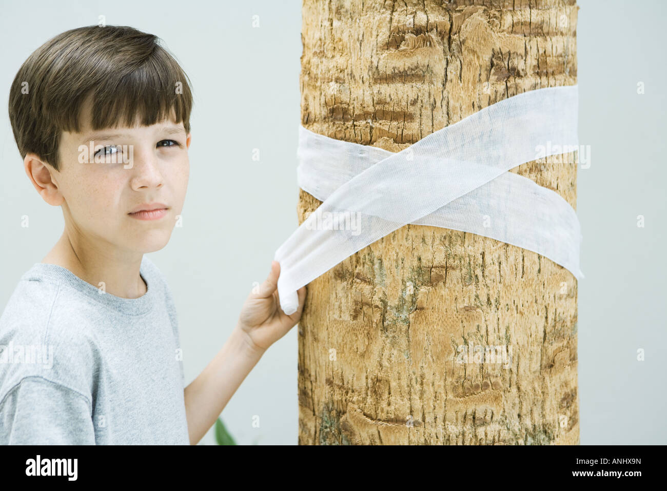 Boy wrapping bandage around tree trunk, looking at camera - Stock Image
