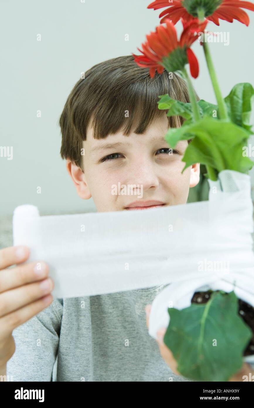 Boy wrapping gauze around gerbera daisies, looking at camera - Stock Image