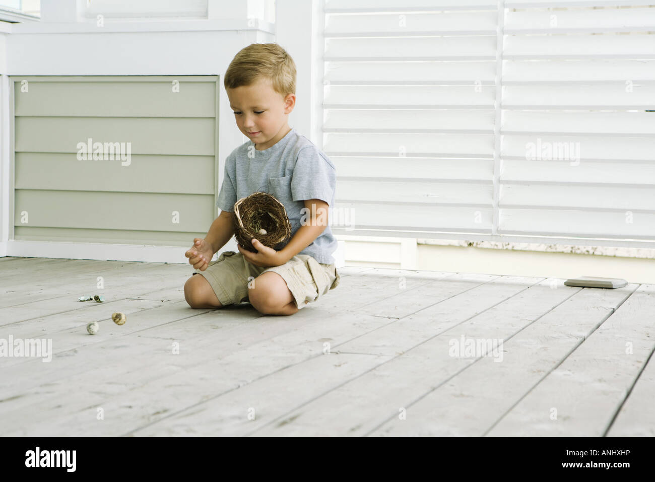 Boy kneeling on the ground, spilling eggs out of bird's nest - Stock Image