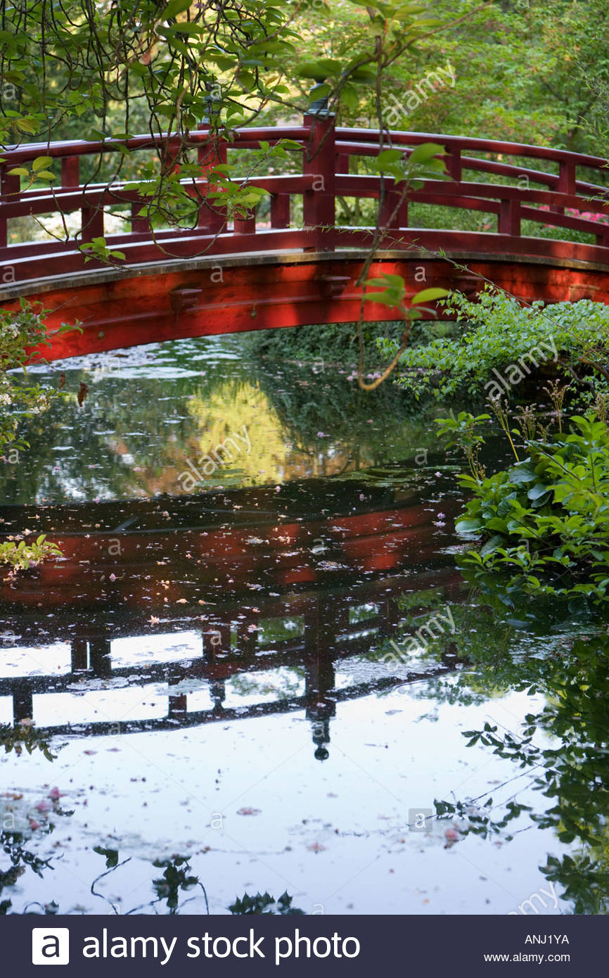 Wooden Japanese Bridge Garden Exotic Water Reflexion Floating Leaves  Idyllic Bayer Chemical Plant Leverkusen Germany Europe