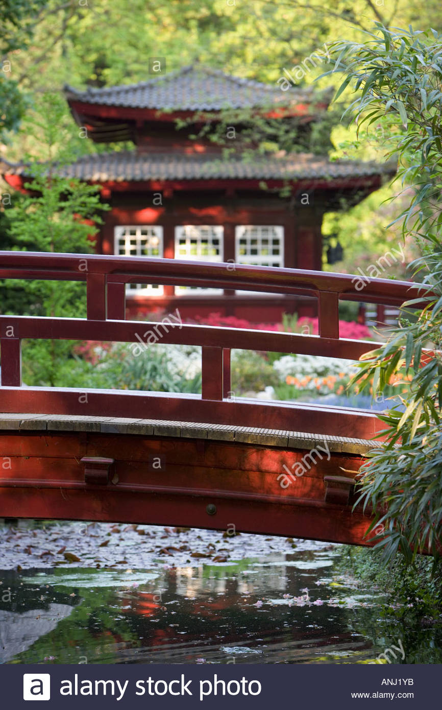 Wooden Japanese Bridge Garden Pavillon Teahouse Exotic Water Reflexion  Idyllic Bayer Chemical Plant Leverkusen Germany Europe