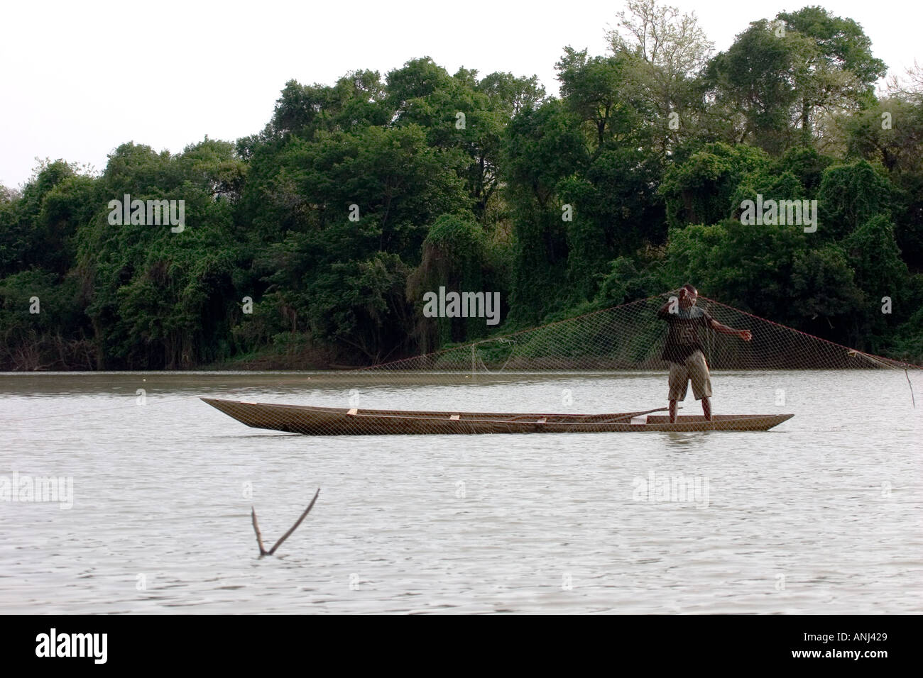 Fisherman inspecting his net on the Black Volta river north western Ghana - Stock Image