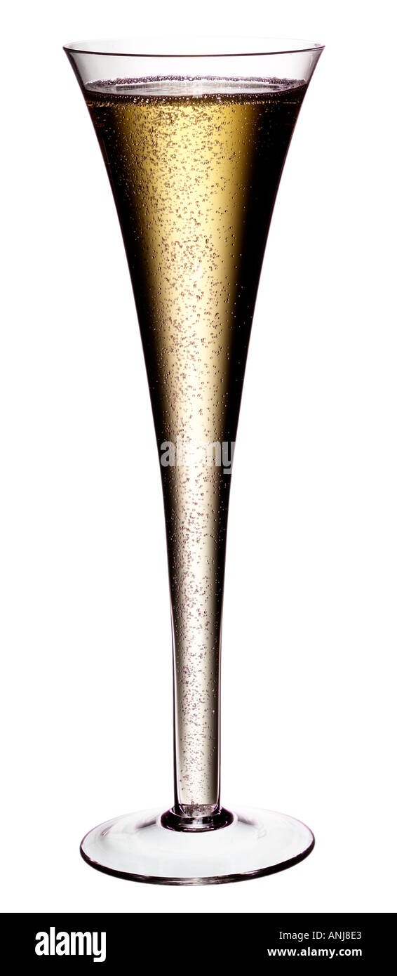 CHAMPAGNE FLUTE ON WHITE - Stock Image
