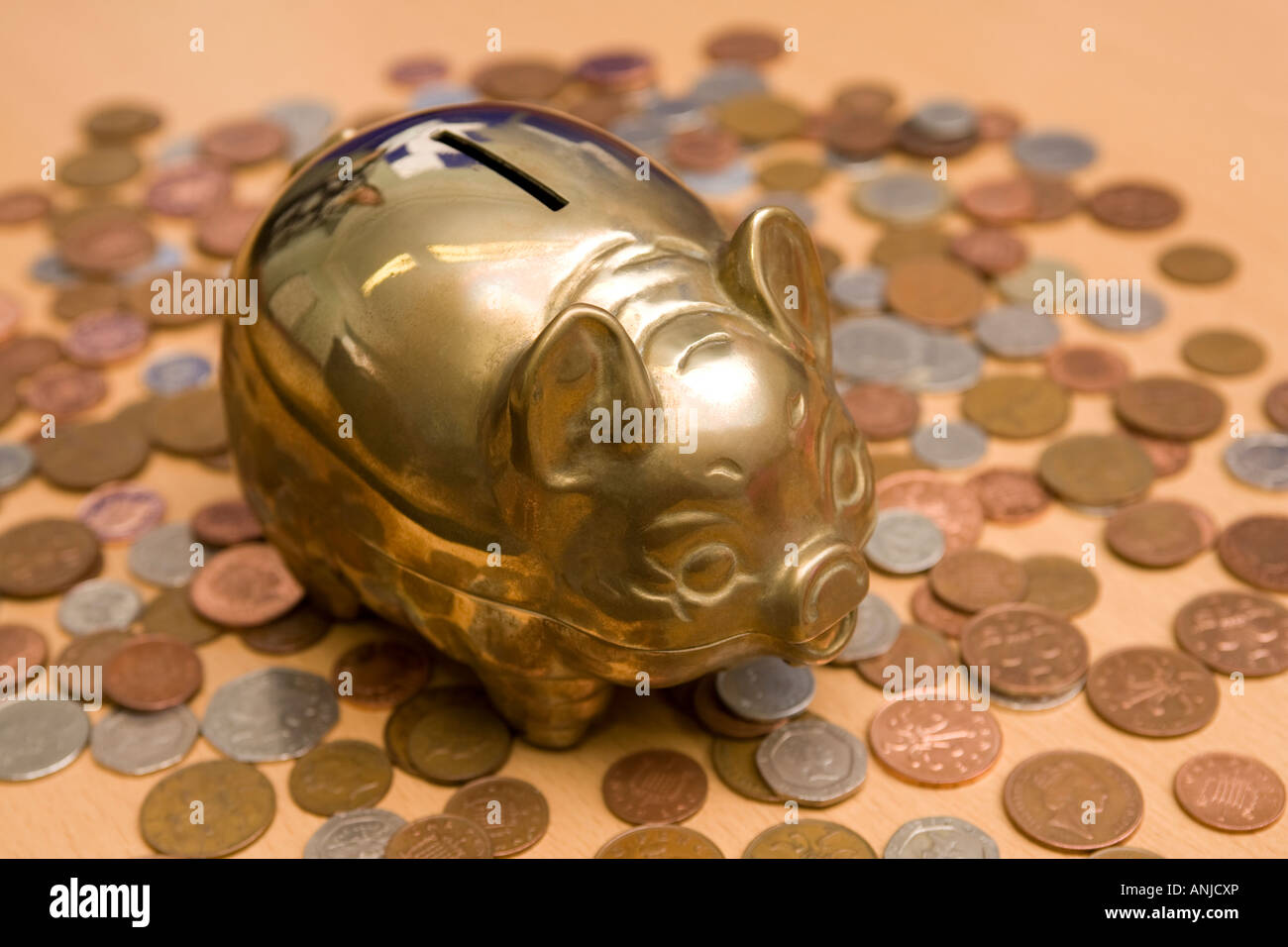 finance savings coins with brass piggy bank - Stock Image