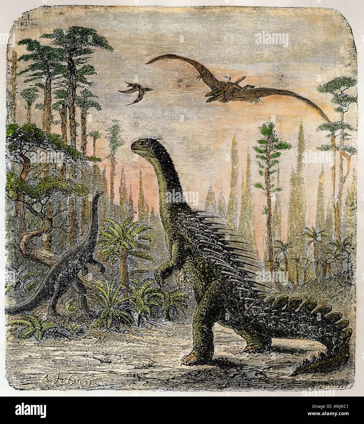 Dinosaur Stegosaurus - Stock Image