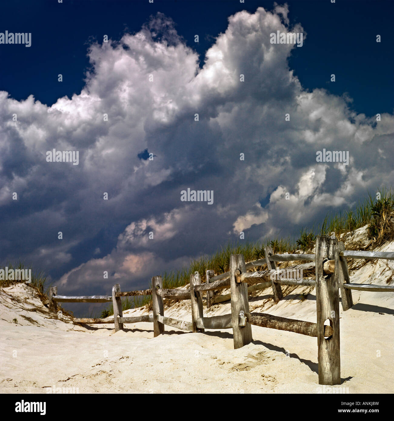 Wooden fence on the sand dune - Stock Image
